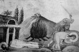Капитолина Каппадокийская :: Мученицы Капитолина и Еротиида